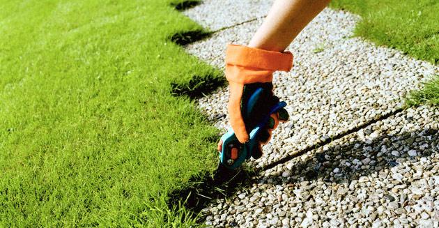 exemple lettre de motivation jardinier paysagiste