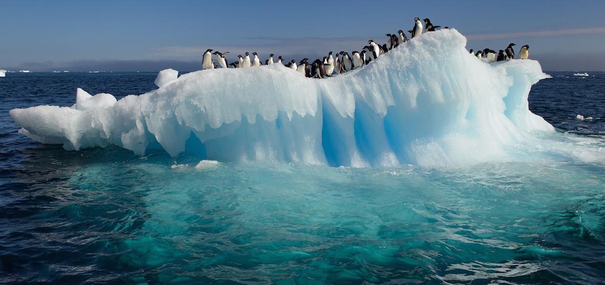 vous  u00eates un iceberg   r u00e9v u00e9lez la surface cach u00e9e de votre