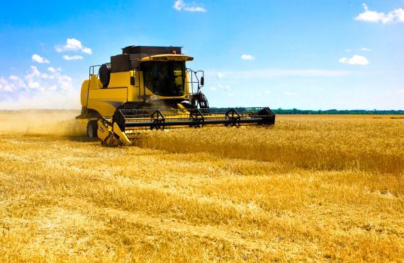 exemple de cv ouvrier agricole