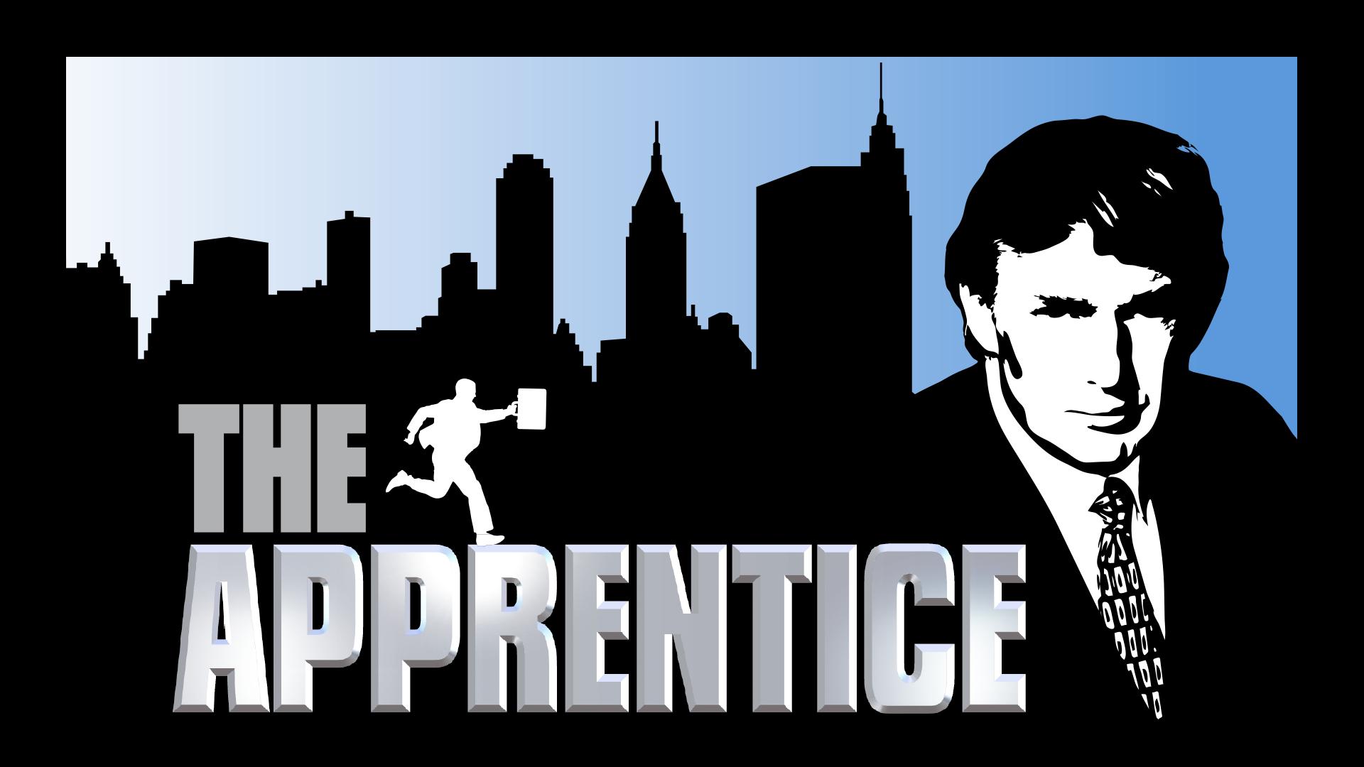 the apprentice   14 candidats  1 cdi  1 grande entreprise