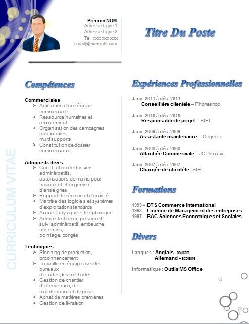 exemple cv d un responsable commercial